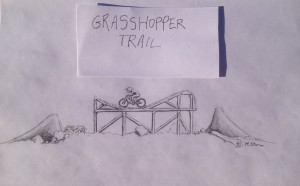 Illustration of new Step-on/Step-off Banana Feature planned for Grasshopper Trail.